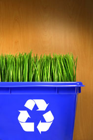 Green Grass Recycle Bin