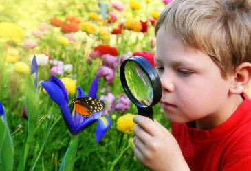 Boy with magnifying glass observing butterfly