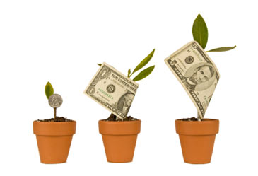 moneygrowthonplants