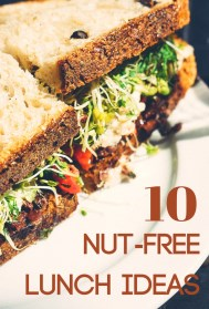 Nut Free Lunch Ideas Pinterest Graphic