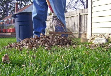 YardWork,RakingLeaves