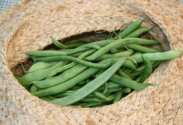 String beans in a woven basket