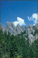 View of the Black Hills of South Dakota