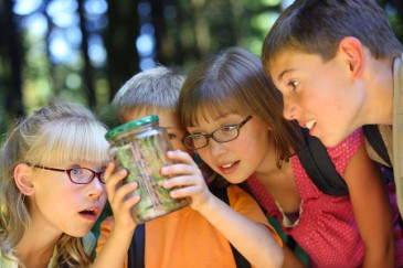 Summer camp essentials, insect repellent for children bug catching