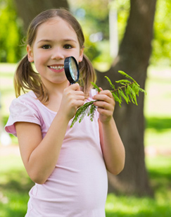 Young Girl Examining Leaf