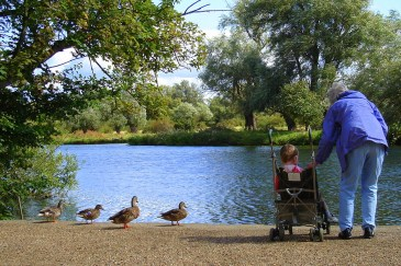 grandparent, grandchild watching ducks