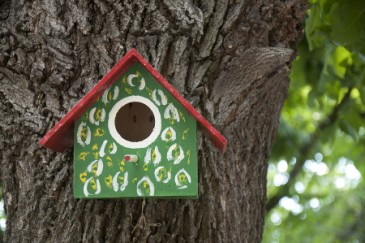 Fathers Day activities, hand built and painted birdhouse