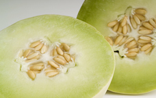 melons for prenatal nutrition