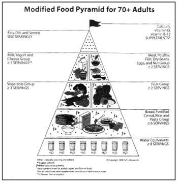70-plus pyramid