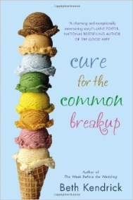 Cure for the Common Breakup, 2014 book