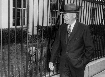 PresidentialPets,PresidentEisenhower,dog,Heidi