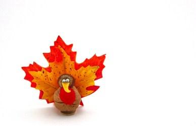 turkey Thanksgiving craft
