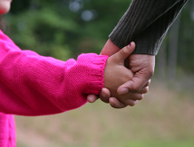 Close up of child holding parents hand