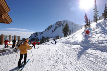 Winter,Snowskiresort