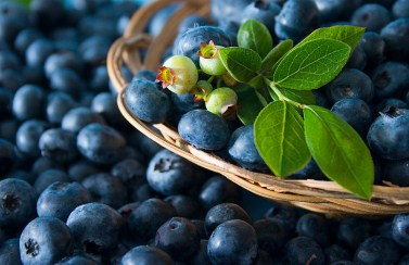 Dirty Dozen produce list, blueberries