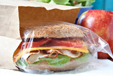 Green school lunch ideas, school lunch with sandwich bag