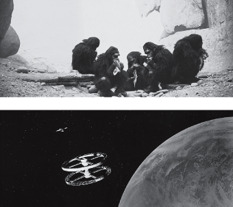 In this flash forward from 2001: A Space Odyssey, Kubrick seems to be saying that the object and the technology have changed, but that the aggressive fascination with flight has not.