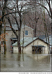 natural disaster of hurricane katrina essay Natural disasters: what causes them how do  when the levees burst in new orleans following hurricane katrina  describe the most recent natural disaster that.