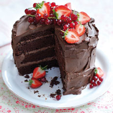 Gluten-Free Chocolate Layer Cake photo