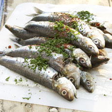 Simple Grilled Sardines photo