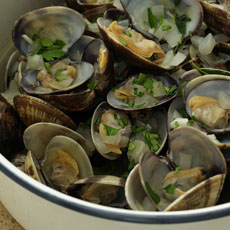 Clams in White Wine photo