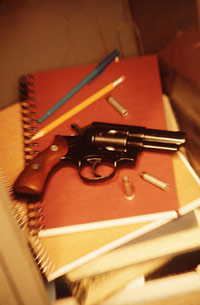 milestones in federal gun control legislation essay The case for moderate gun control  in addressing the shape of appropriate gun policy, this essay as-  any new gun control measures will become federal law is .