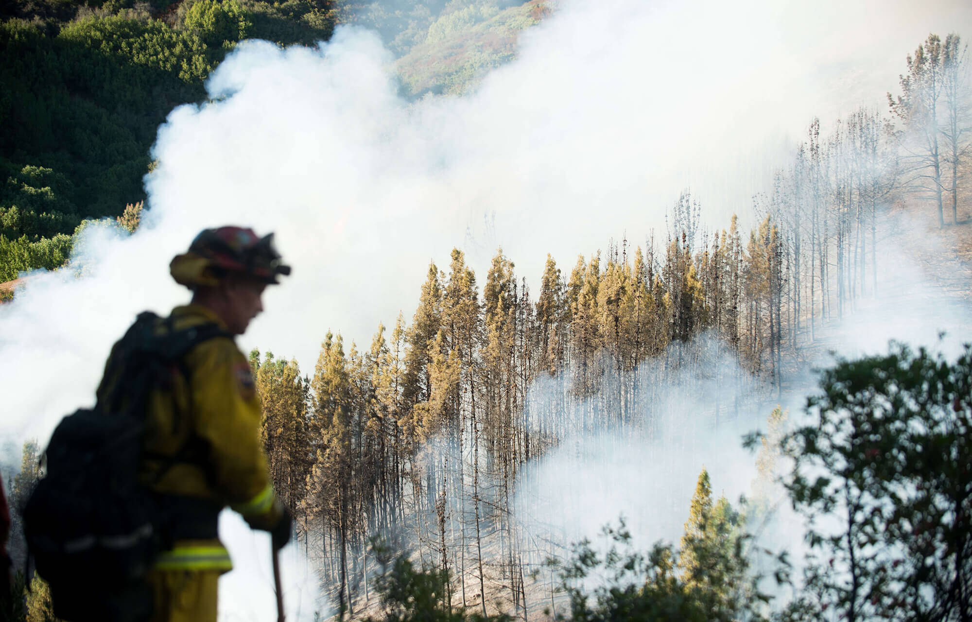 Image of firefighter in front of wildfire