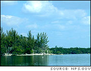 Looking north over Biscayne Bay at an island (at left) and at mangroves that line the shoreline (at back).