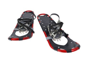 Christmas gifts for anyone, modern looking adult snowshoes