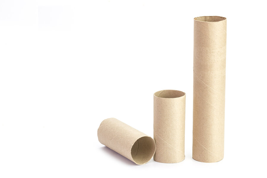 toilet paper roll STEM activity