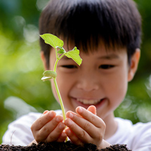 Boy Holding a Young Plant
