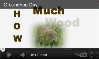 Video: Groundhog Day